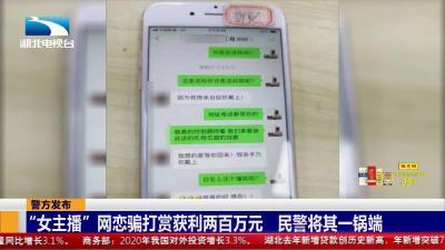 """""""女主播""""网恋骗打赏获利两百万元 民警将其一锅端"""