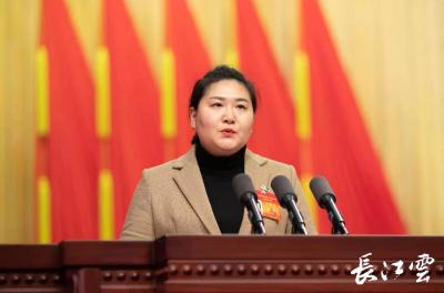 湖北省政协委员吕莹:加强社区建设提升基层治理效能