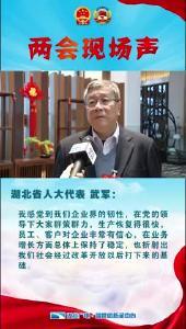Vlog丨湖北省人大代表武军:企业快速恢复生产 为未来发展夯实基础