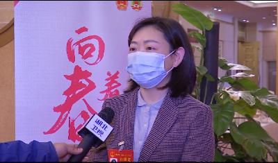湖北省人大代表张淑香:仙桃打造非制造布特色小镇
