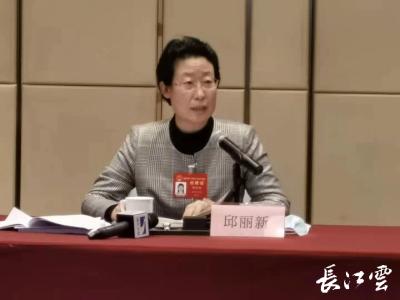 湖北省人大代表邱丽新:让小企业变大 让大企业变强