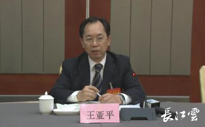 湖北省人大代表王亚平:把握切入点着力点突破口  打造市场化法治化国际化营商环境
