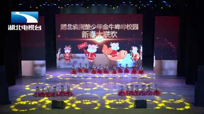 宜昌颖领舞蹈丨《中国梦娃》