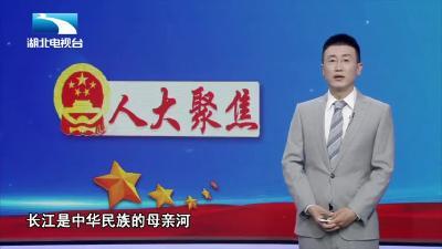 守护母亲河! 长江保护法3月起正式施行