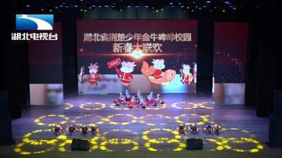 宜昌颖领舞蹈丨《花儿那样红》