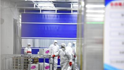 海关检测进口冷链食品样本149万个 检出核酸阳性样本79个