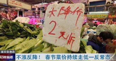 不漲反降! 春節菜價持續走低一反常態