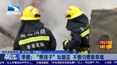 """【消防救援现场】孝感:""""熊孩子""""玩烟花 不慎引燃柴草堆"""
