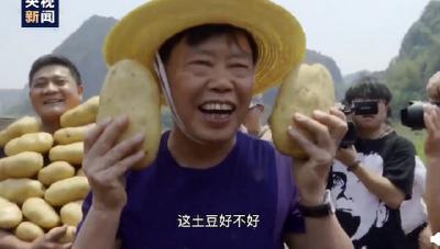 """""""土豆院士""""""""柑橘院士""""…中国处处有山海情"""