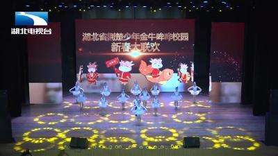 宜昌颖领舞蹈丨《花儿与少年》