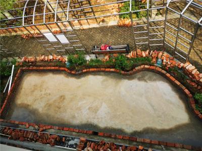 """可种菜可养鱼 无锡一社区阳台打造""""天空花园"""""""