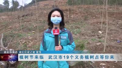 植树节来临  武汉市19个义务植树点等你来