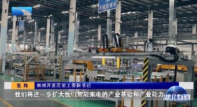 """创新引领高质量发展丨荆州:向""""灯塔工厂""""看齐 推动家电产业智能化"""