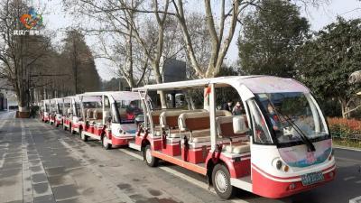 东湖赏樱,可车、可船、可骑行!