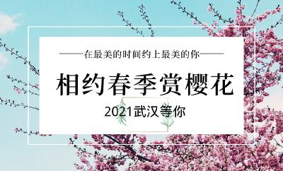 武汉向全国人民发出邀请:花开满城,共赏美景