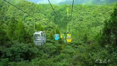 3月8日,咸丰这些景点免门票