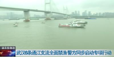 武汉6条通江支流全面禁渔 警方同步启动专项行动
