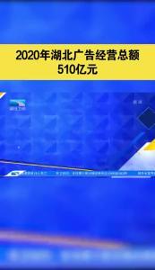 2020年湖北广告经营总额510亿元