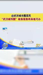"""""""武汉城市圈""""政务服务将异地可办"""
