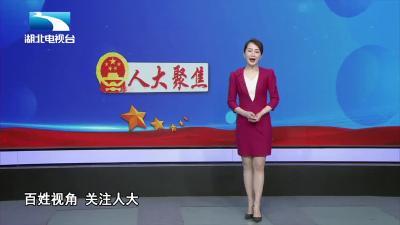 九市人大常委会共议协同立法  加快推动武汉城市圈同城化发展