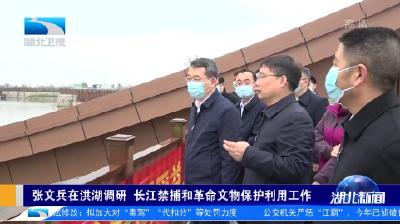 张文兵在洪湖调研 长江禁捕和革命文物保护利用工作