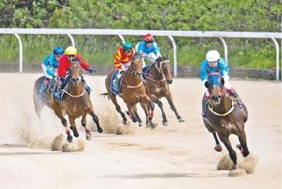 中国·武汉速度赛马第二个赛马日,伊犁良驹首夺头马