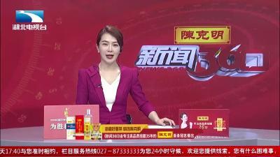 武汉:第10届武汉茶博会开幕  湖北春季新茶广受追捧
