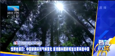 热闻@你 | 第52个世界地球日 亚洲森林面积增加主要来自中国
