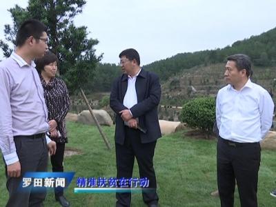 """王立兵来我县调研""""千企帮千村""""精准扶贫工作"""