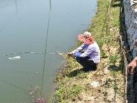 項家河約你一起釣蝦、吃蝦啦~