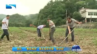 """""""整县推进""""激发基层党建""""新动能"""""""