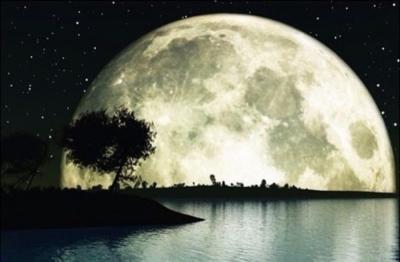 中 秋 的 月 光