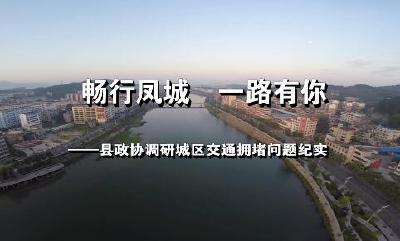 畅行凤城一路有你——县政协调研城区交通拥堵问题纪实