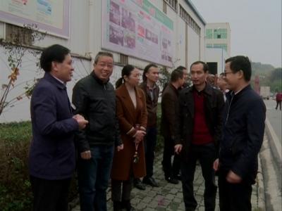 广东省黄冈商会来我县考察经济 旅游开发项目