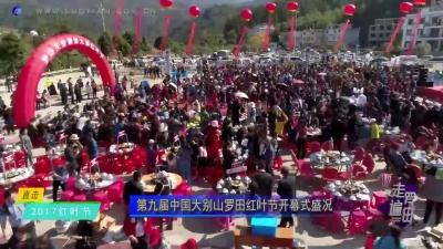 直击2017红叶节