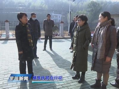 郝爱芳到凤山镇调研精准扶贫工作