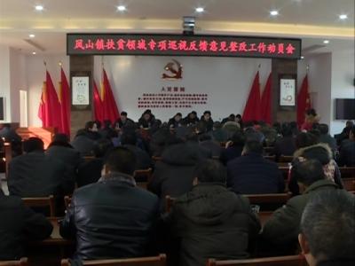凤山镇部署扶贫领域专项巡视反馈意见整改工作