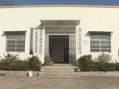 三里畈镇:村企共建  发展共赢