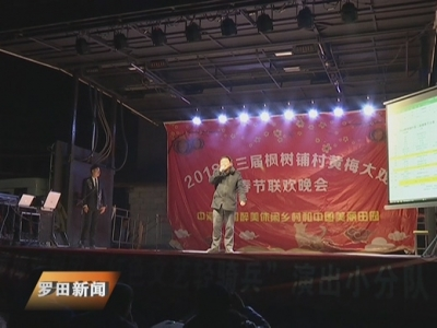 """乡贤能人自筹资金办""""村晚"""""""