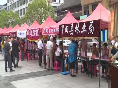 罗田县开展全国科普日宣传活动