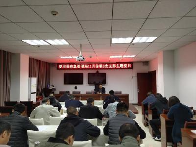 羅田縣應急管理局召開11月份第二次支部主題黨日活動