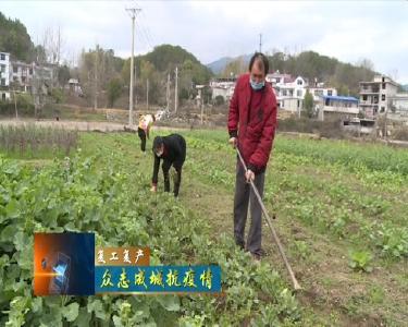 匡河鎮:統籌做好疫情防控與春季農業生產