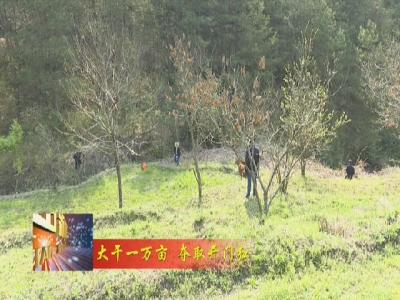 罗田县大力实施土地增减挂钩 耕地占补平衡 旱改水项目 助力墟落复兴