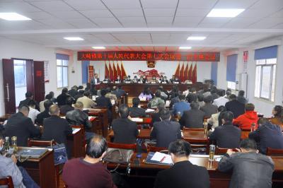 大崎镇召开第十届人民代表大会第七次会议