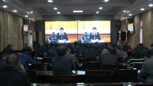 罗田县收听收看全市11月份重大项目调度工作电视电话会