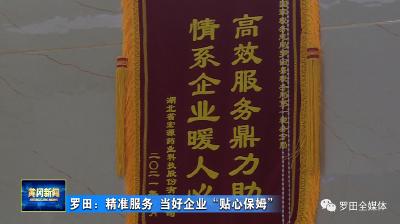 """罗田县税务局:精准服务 当好企业""""贴心保姆"""""""