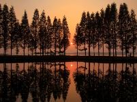 夕照金沙湖