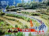 """【央視】《軍事紀實》播出《紅安""""尋根記""""》"""