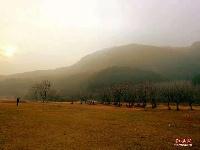 远看山有雾,近听水无声