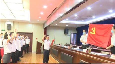 红安经济开发区开展纪念建党99周年主题党日活动